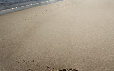 Playa Fedorento