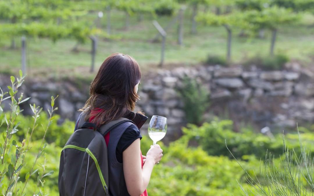 La 1ª BTT Ruta do Viño Rías Baixas ofrecerá una ruta de senderismo para acompañantes de los participantes en la prueba