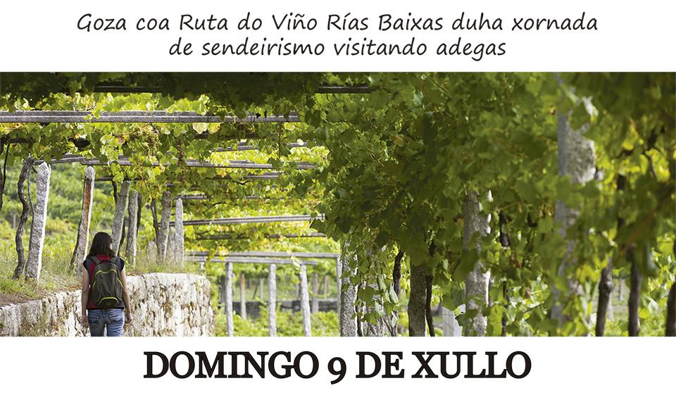 La Ruta do Viño Rías Baixas participa en la XII Festa do Tinto Rías Baixas de As Neves con una jornada de senderismo