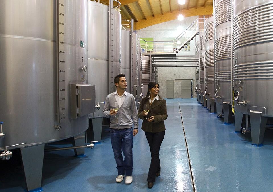 La Ruta do Viño Rías Baixas cuenta con 22 establecimientos asociados con la distinción SICTED de Calidad Turística