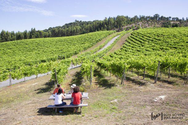La Ruta do Viño Rías Baixas inicia las VIII Jornadas de Puertas Abiertas con sus más de 420 plazas reservadas