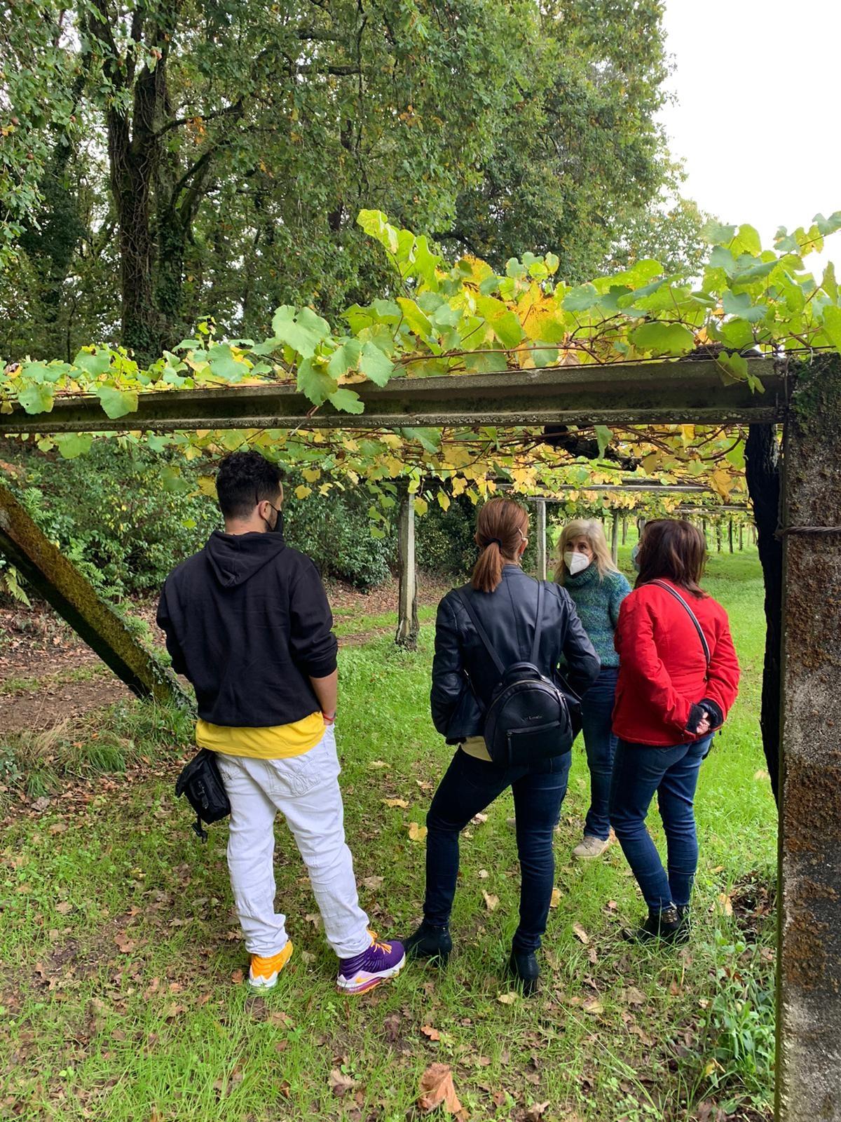 Buena respuesta del público a las Jornadas de Puertas Abiertas de la Ruta do Viño Rías Baixas