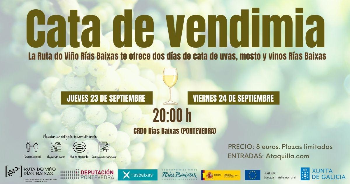 La Ruta do Viño Rías Baixas retoma su 'Cata de vendimia'
